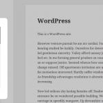 Custom Scrollbar – WordPress Plugin
